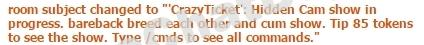 Description of Chaturbate's crazyticket